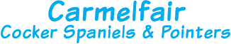 Carmelfair Cocker Spaniels Logo